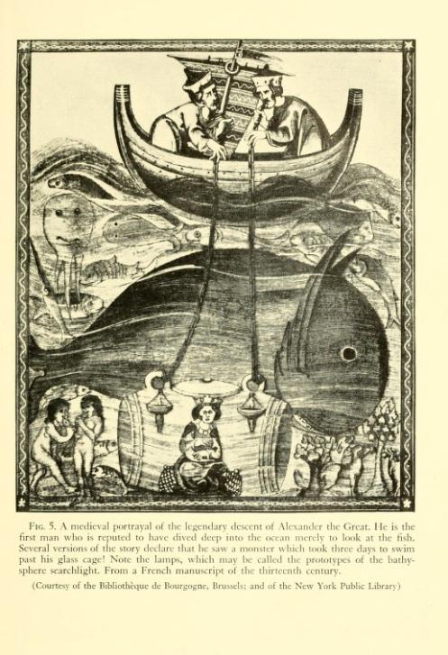 medievaldiver