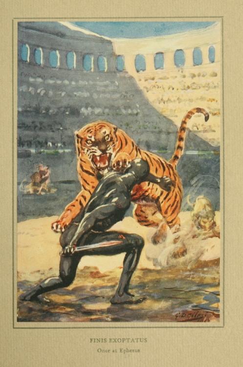 tigerattack